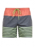 Купить Шорты Protest Crusher Beachshort Blue Gas