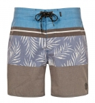 Купить Шорты Protest Division Beachshort Blue Gas